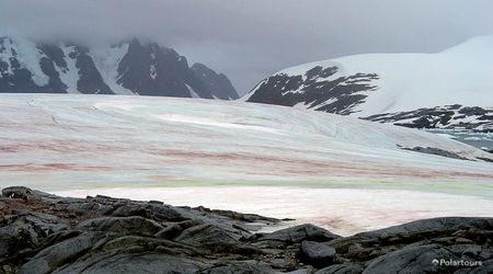Antarctica Visitor Site- Pleneau Island
