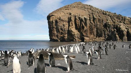 Antarctica Visitor Site- Baily Head, Deception Island