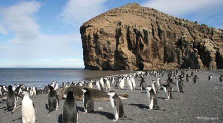 Antarctica Visitor Site- Baily Head, Deception Island