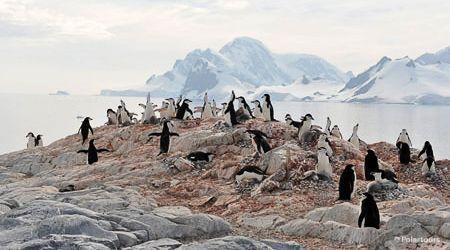 Antarctica Visitor Site- Orne Islands