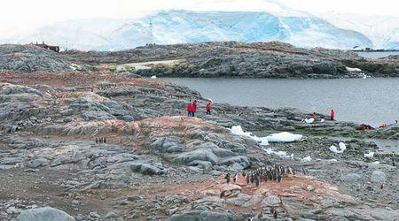 Antarctica Visitor Site- Jougla Point
