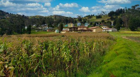 Sisid Anejo village