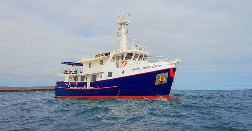 Cachalote Explorer Galapagos Cruise