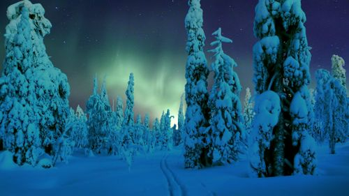 Lapland Northern Lights by timo_w2s