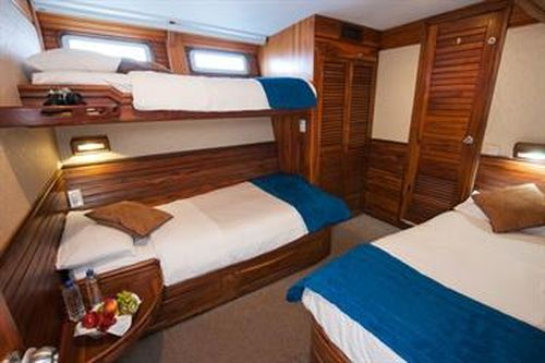 Letty Triple cabins