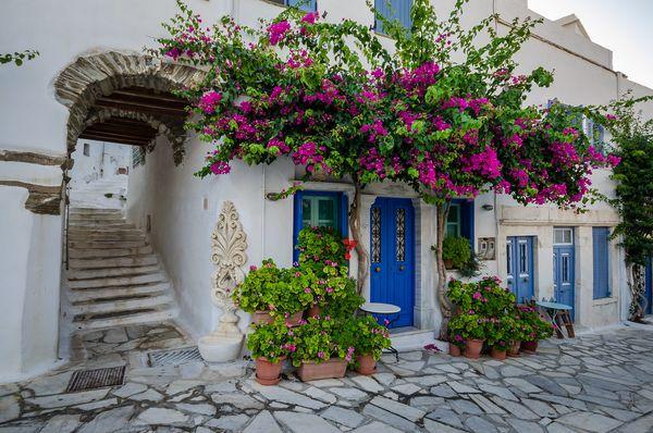 Tinos Blue White Houses Flowers xgrei Island Cyclades