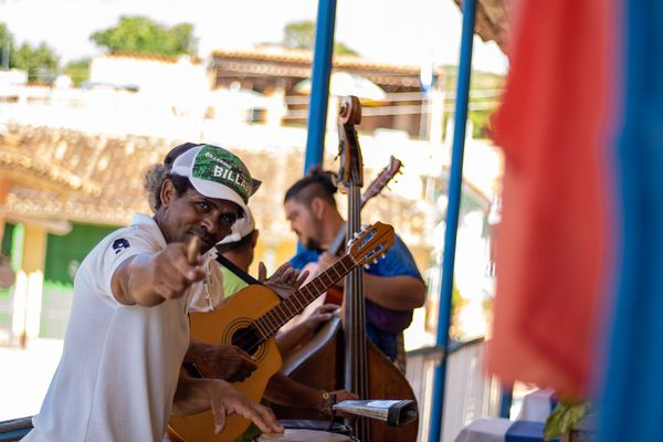 trinidad musician