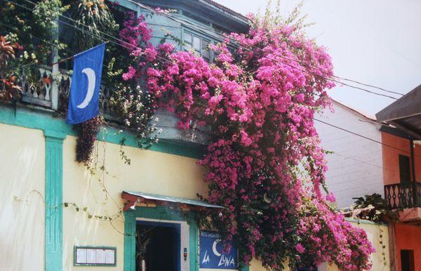 isla flores hotel luna guatemala