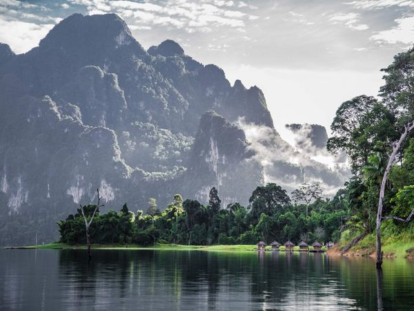 Khao Sok National Park Jungle Scenary