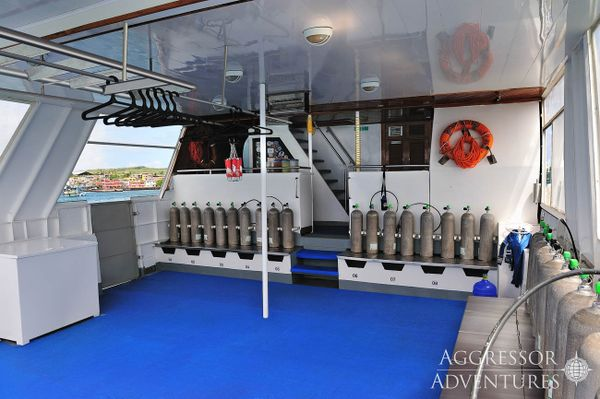 Aggressor III Galapagos Diving Cruise