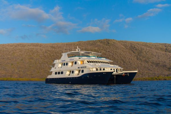 Cormorant Galapagos Cruise