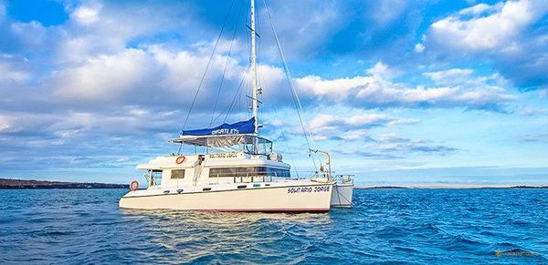 Lonesome George Galapagos Cruise
