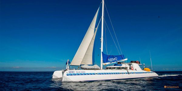 Nemo I Galapagos Cruise