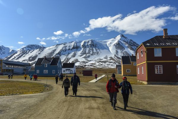 Albatros Expedition high arctic- iceland to svalbard