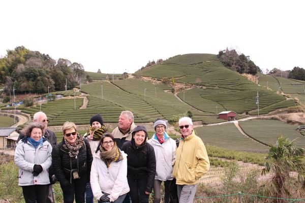 Tea field group picture