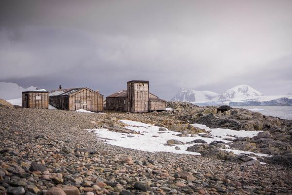 An Antarctica Cruise on board the G Expedition with Polartours