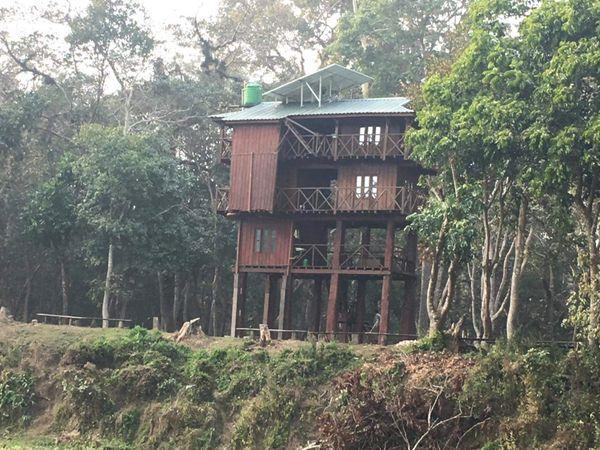 Tree house Chitwan National Park